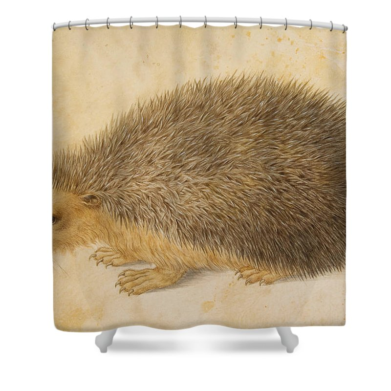 Hans Hoffmann Shower Curtain Featuring The Painting A Hedgehog By