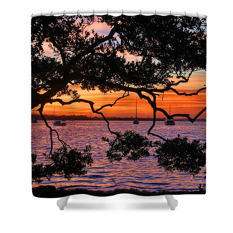 Hh Photography Of Florida Shower Curtain featuring the photograph A Mangrove Morning by HH Photography of Florida