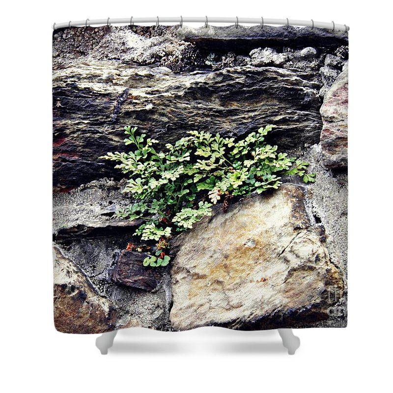 Wall Shower Curtain featuring the photograph A Medieval Town Wall by Sarah Loft