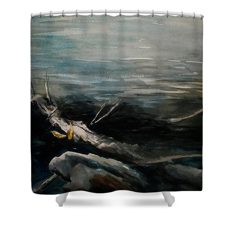 Landscape Shower Curtain featuring the painting A Moment In Time by Rachel Christine Nowicki