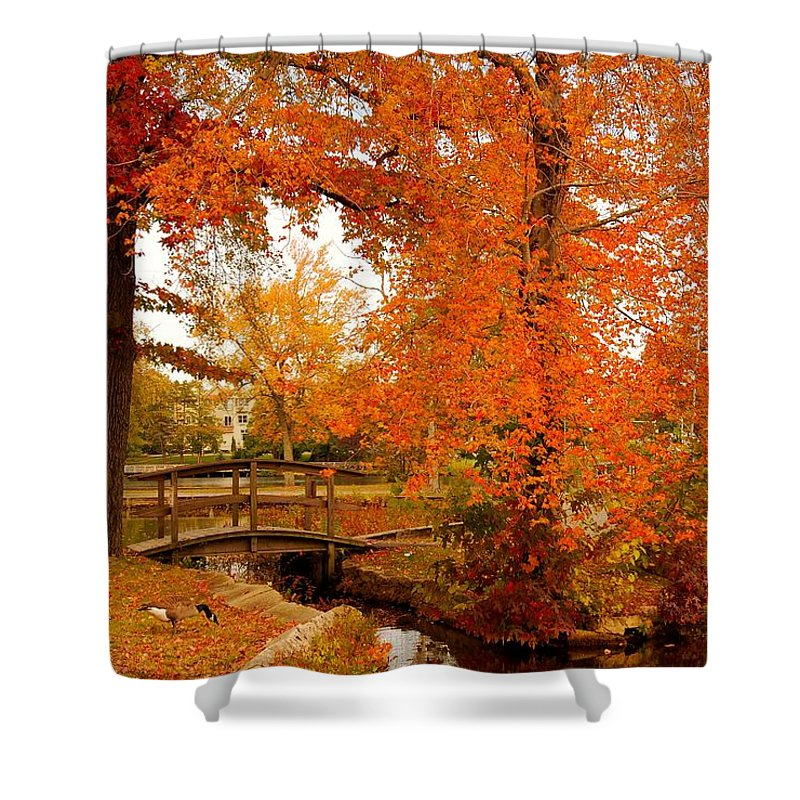 New Jersey Shower Curtain featuring the photograph A Morning In Autumn - Lake Carasaljo by Angie Tirado