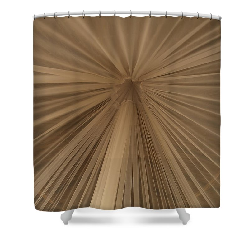 Tulum Shower Curtain featuring the photograph A Mosquito Net, Viewed From The Inside by Stephen Alvarez