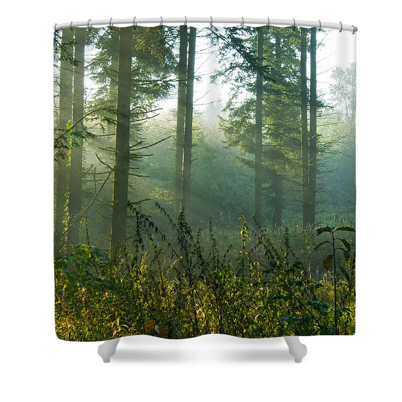 Nature Shower Curtain featuring the photograph A New Day Has Come by Daniel Csoka