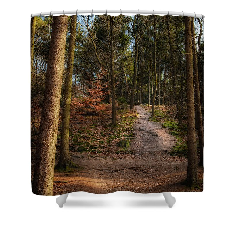 Gelderland Shower Curtain featuring the photograph A Path Through The Woods by Tim Abeln