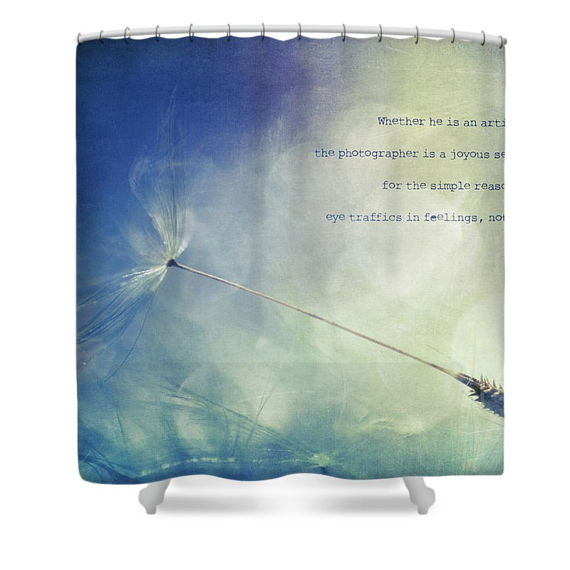 Dandelion Shower Curtain featuring the photograph A Photographer's Eye by Joy Gerow