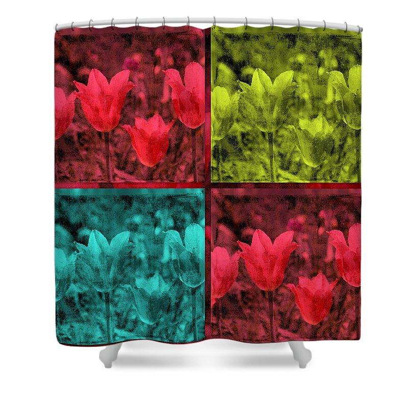 Quadruple Shower Curtain featuring the photograph A Quadruple Of Tulips by Susanne Van Hulst
