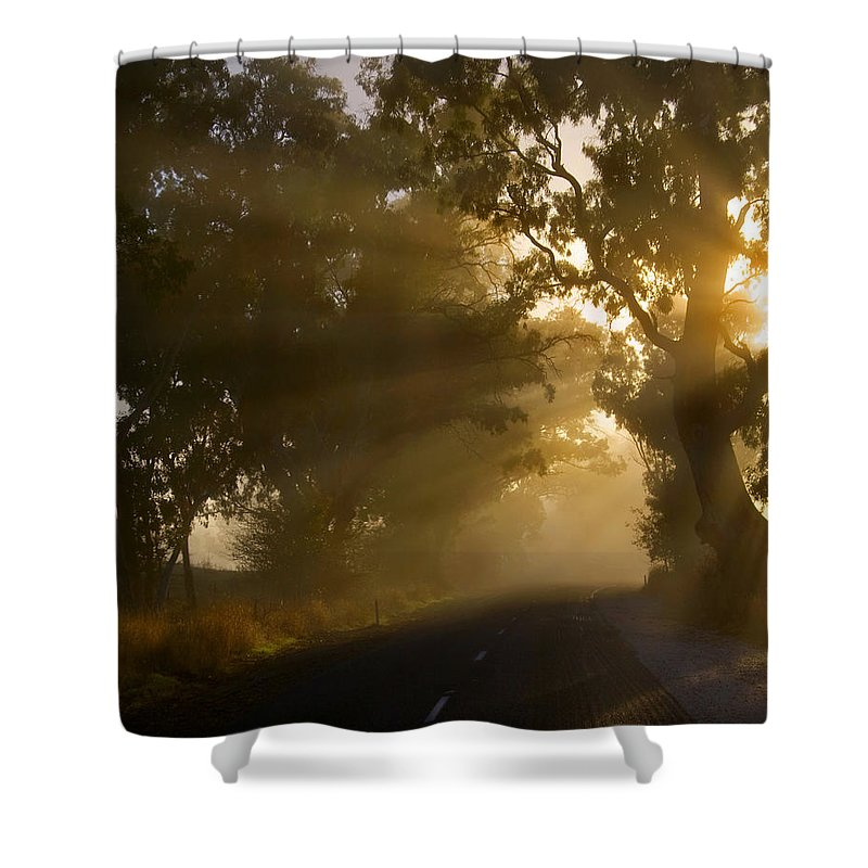 Highway Shower Curtain featuring the photograph A Road Less Traveled by Mike Dawson