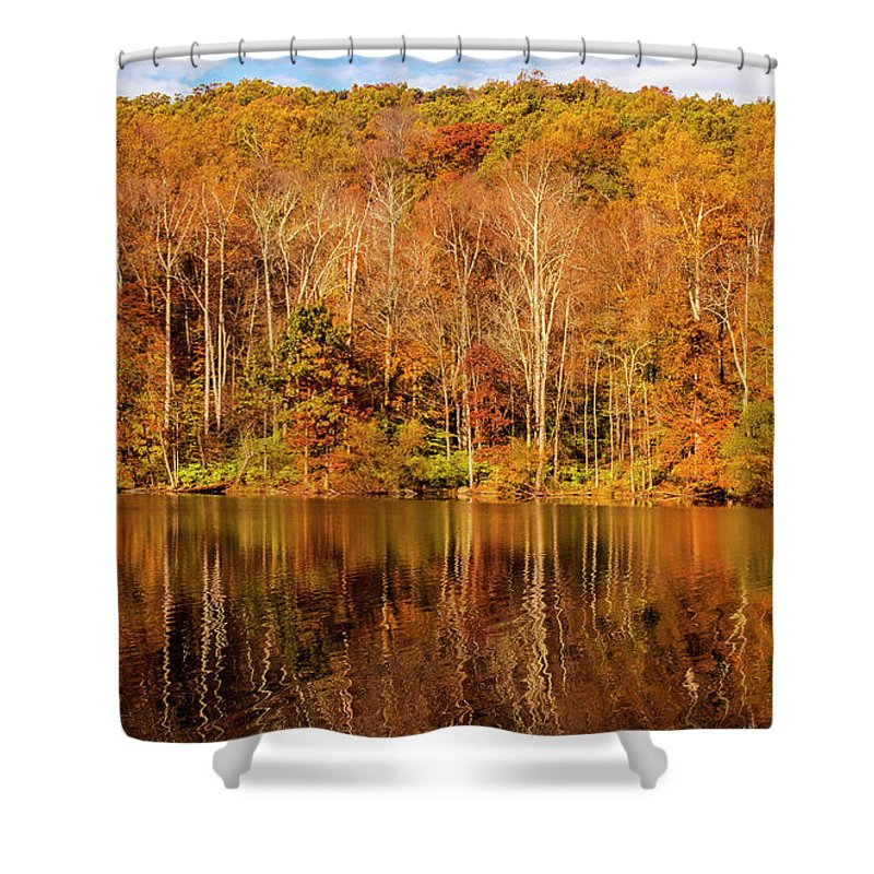 Tree Shower Curtain featuring the photograph A Season Of Reflection by Roy Branson
