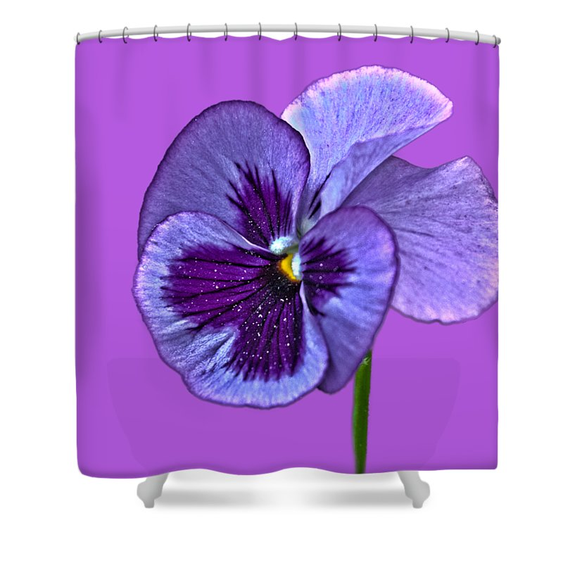 Purple Shower Curtain Featuring The Photograph A Single Pansy On Transparent Background By Terri