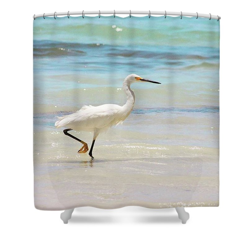 Egret Shower Curtain featuring the photograph A Snowy Egret (egretta Thula) At Mahoe by John Edwards