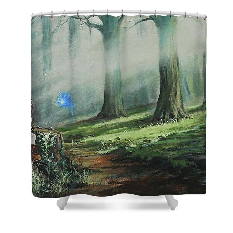 Superior Legend Of Zelda Shower Curtains