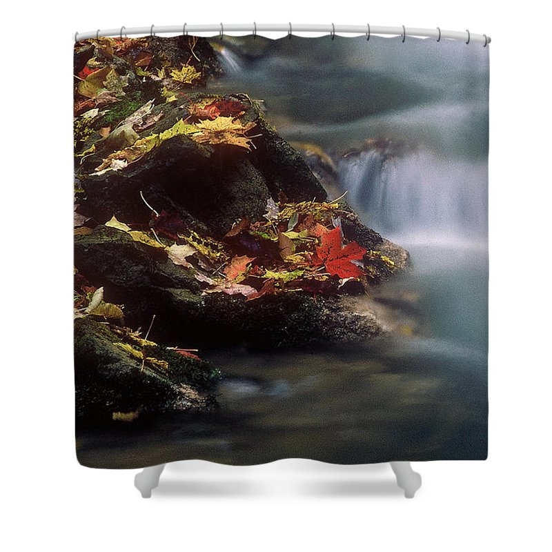 River Shower Curtain featuring the photograph A Special Place by D'Arcy Evans