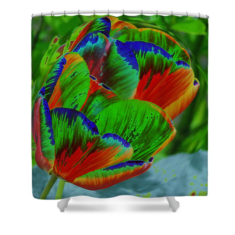 Flowers Shower Curtain featuring the photograph A Stained Tullip  by Jeff Swan