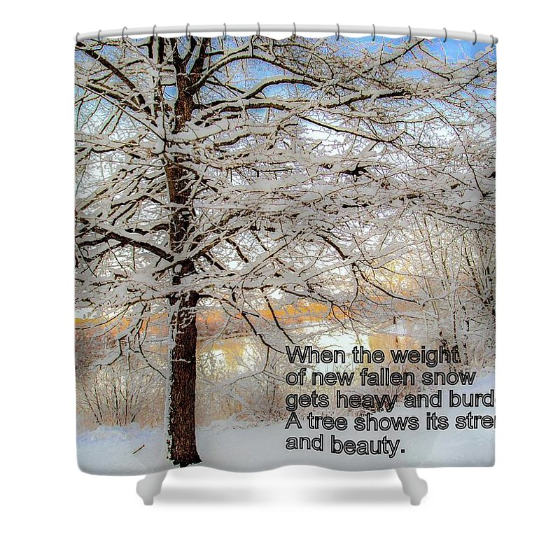 Strength Shower Curtain featuring the photograph A Tree Shows Its Strength And Beauty by Janet Argenta