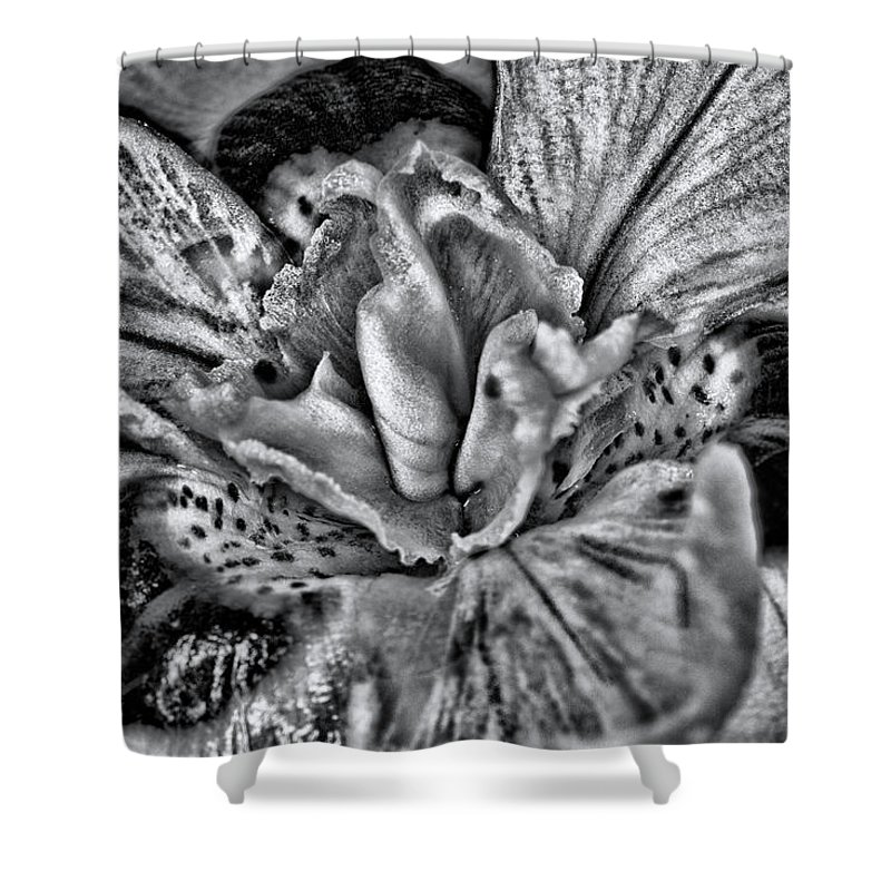 Flower Shower Curtain featuring the photograph A Tribute To Georgia O'keeffe by Roberto Aloi
