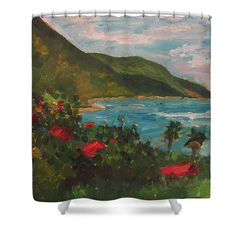 Landscape Hotels St Croix Shower Curtain featuring the painting A View Of Carambola by Diane Elgin