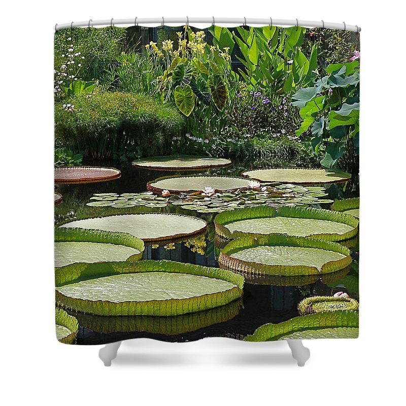 water Garden Shower Curtain featuring the photograph A Water Garden by Byron Varvarigos