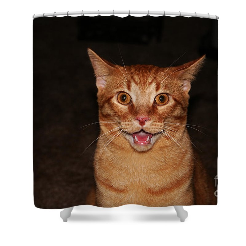 Buddy Shower Curtain featuring the photograph Aaaaaahhhhhhhhhh by Jamie Lynn