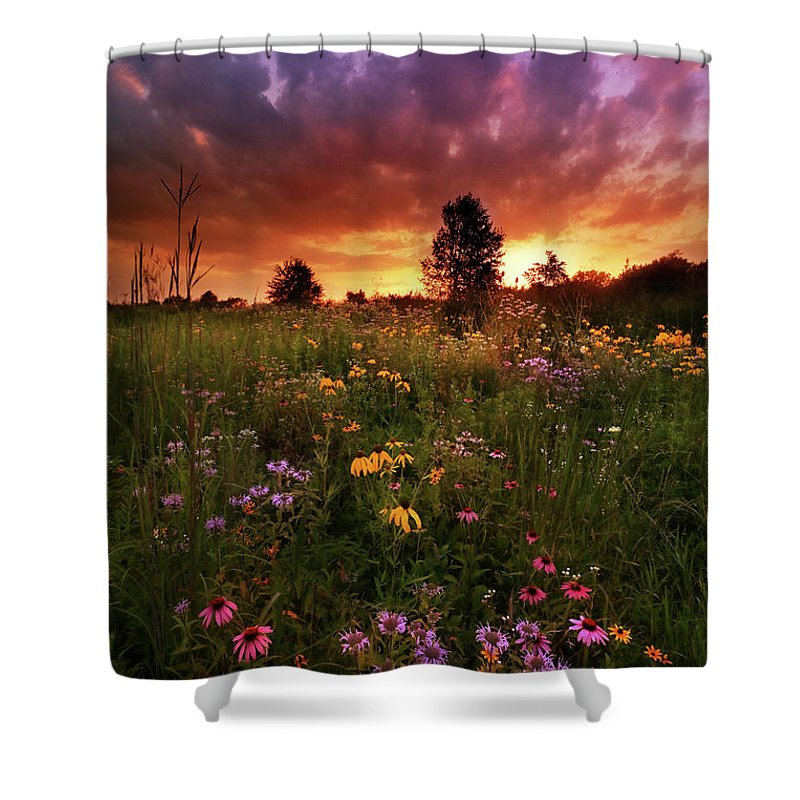 Shower Curtain featuring the photograph Above And Below by Rob Blair