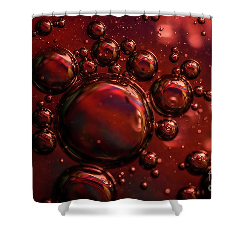 Shiny Shower Curtain featuring the photograph Abstract 0423f by Howard Roberts