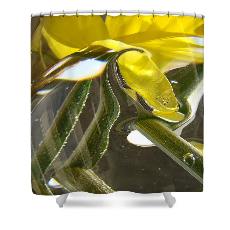 �daffodils Artwork� Shower Curtain featuring the photograph Abstract Artwork Daffodils Flowers 1 Natural Abstract Art Prints Glass Vase Water Art Light Air by Baslee Troutman