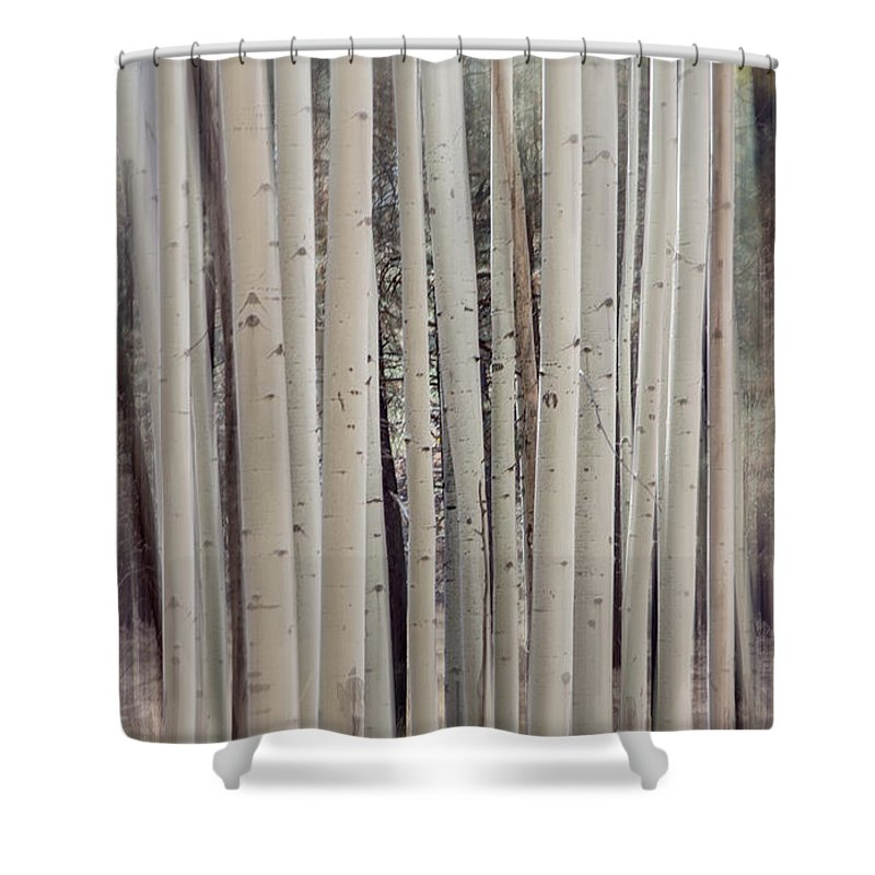 Abstract Shower Curtain featuring the photograph Abstract Aspen Tree Trunks by Susan Westervelt