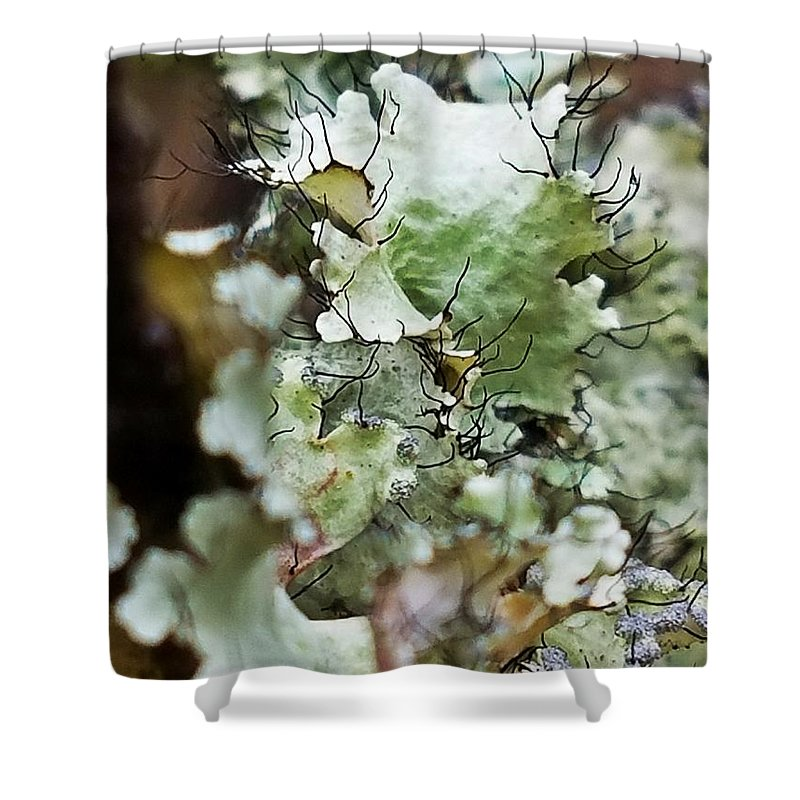 Abstract Flora 1 Shower Curtain featuring the photograph Abstract Flora 1 by Maria Urso