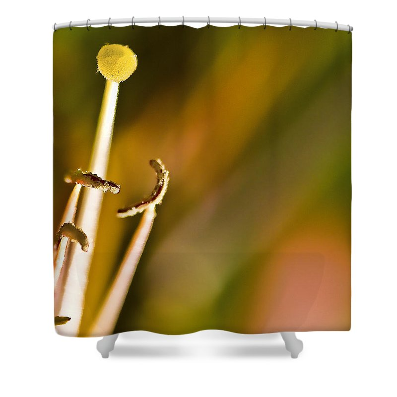 Nature Shower Curtain featuring the photograph Abstract of Nature by Ches Black