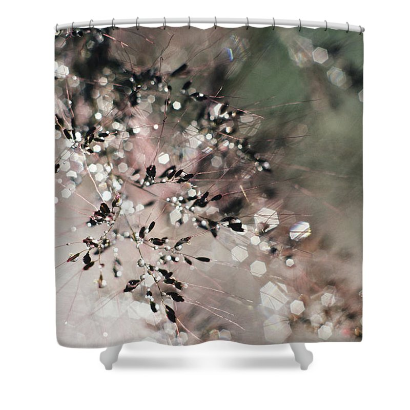 Blur Shower Curtain featuring the photograph Abstract Plant by Larry Dale Gordon - Printscapes