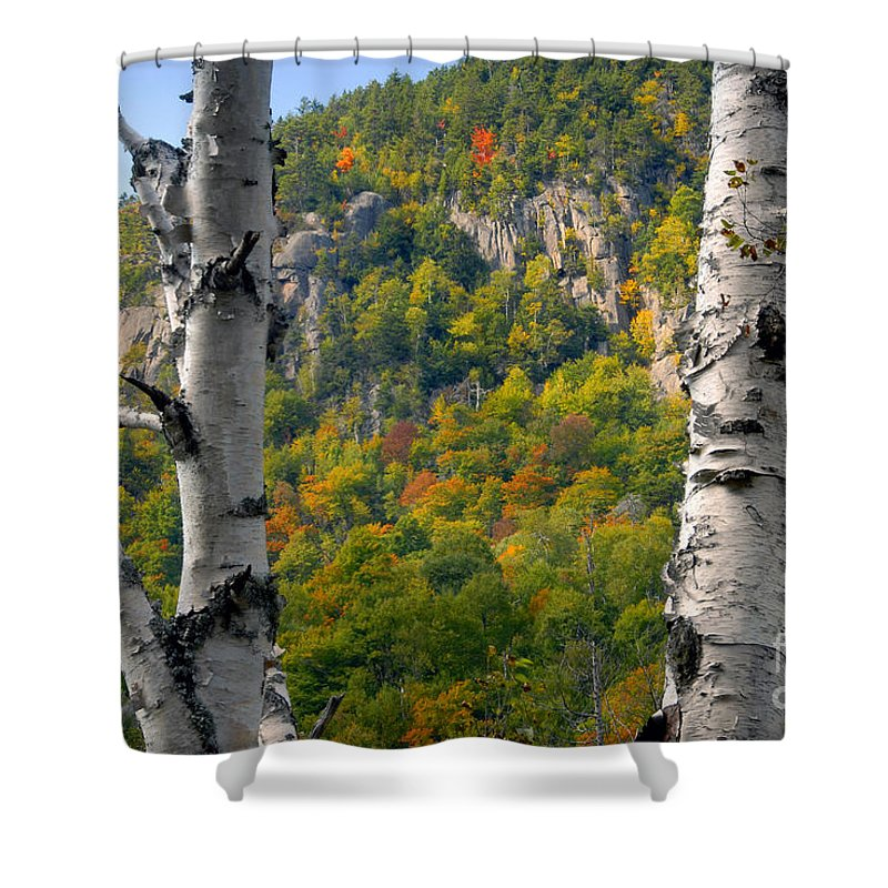 Adirondack Mountains New York Shower Curtain featuring the photograph Adirondack Mountains New York by David Lee Thompson