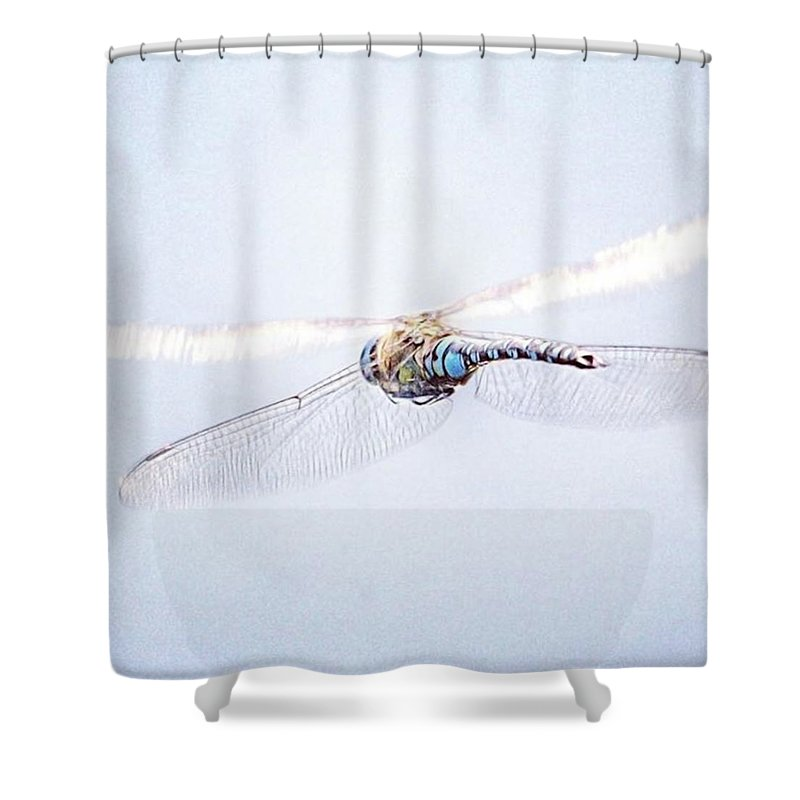 Dragonfly Shower Curtain featuring the photograph Aeshna Juncea - Common Hawker In by John Edwards