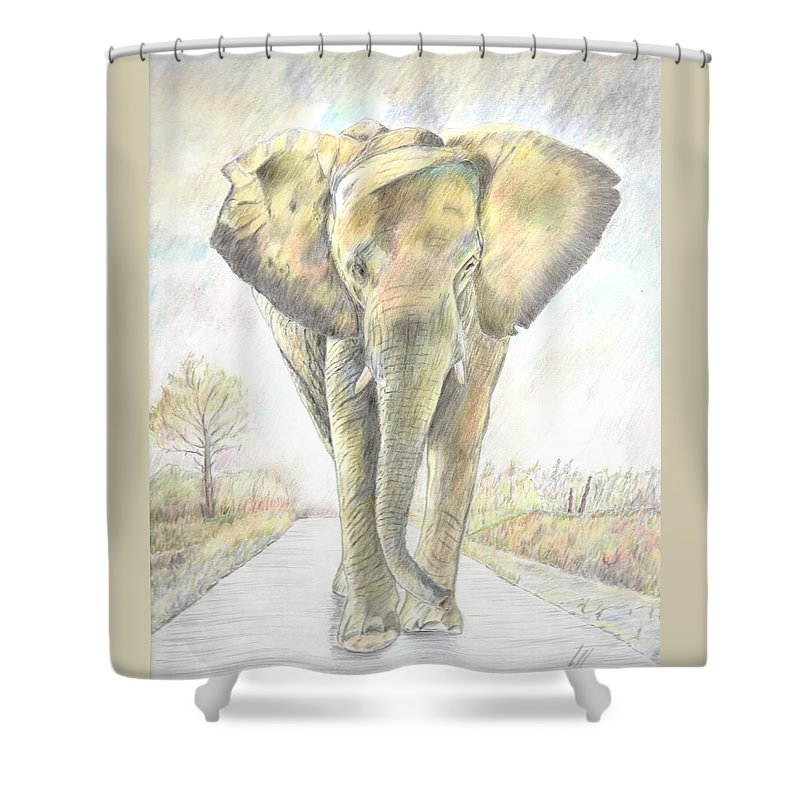 African Elephant. Shower Curtain featuring the drawing African Elephant by Keith Miller