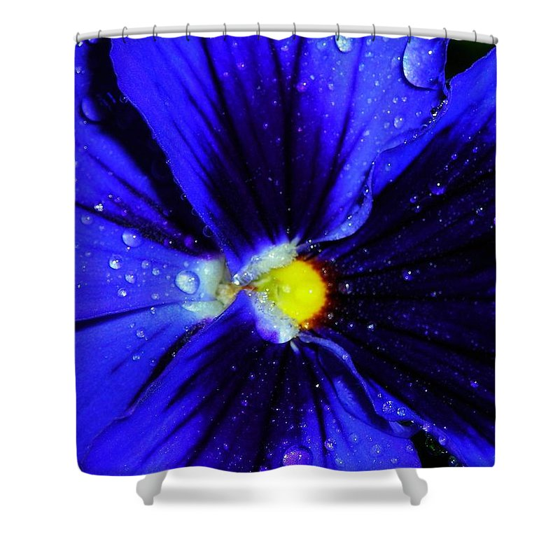 Flower Shower Curtain featuring the photograph After The Rain ... by Juergen Weiss