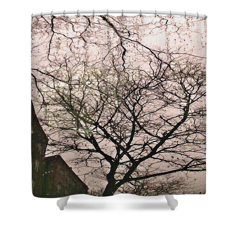 Rain Shower Curtain featuring the photograph Afternoon Rain by Sarah Loft