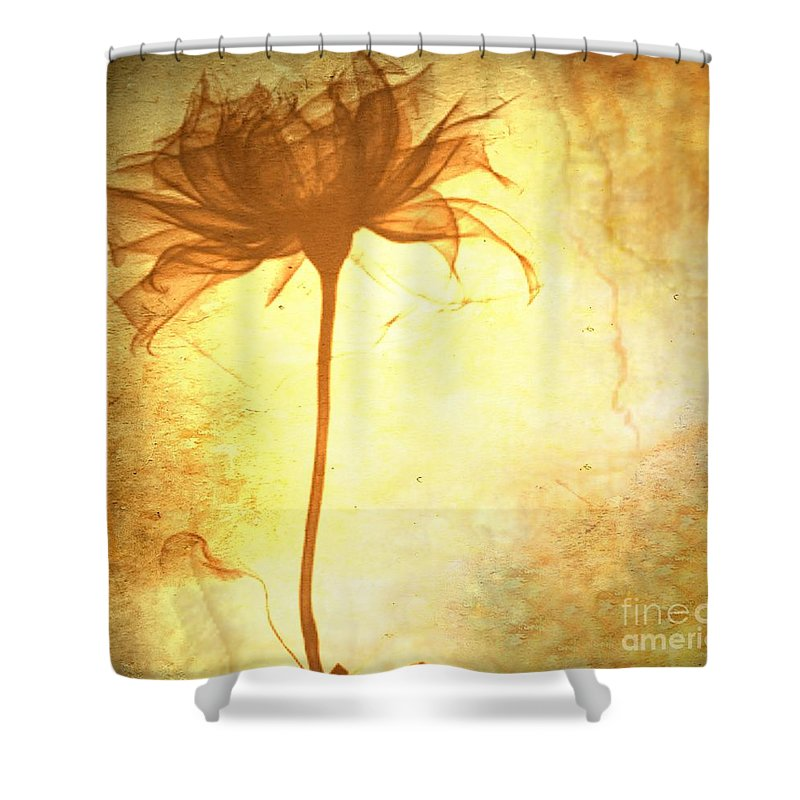 Flower Shower Curtain featuring the painting Against All Odds by Jacky Gerritsen