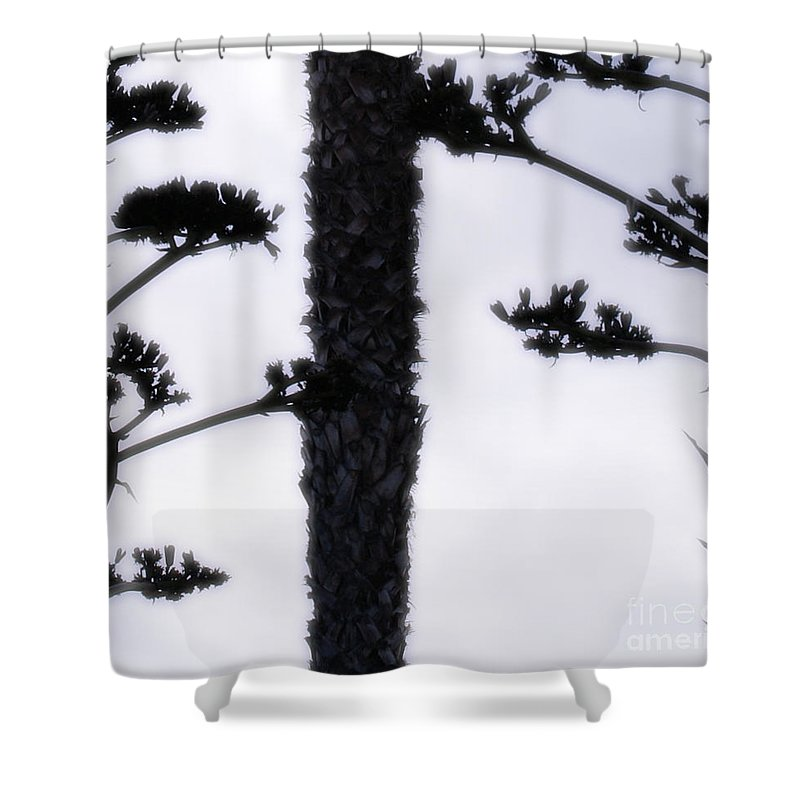 Agave Shower Curtain featuring the photograph Agave And Palm by Linda Shafer