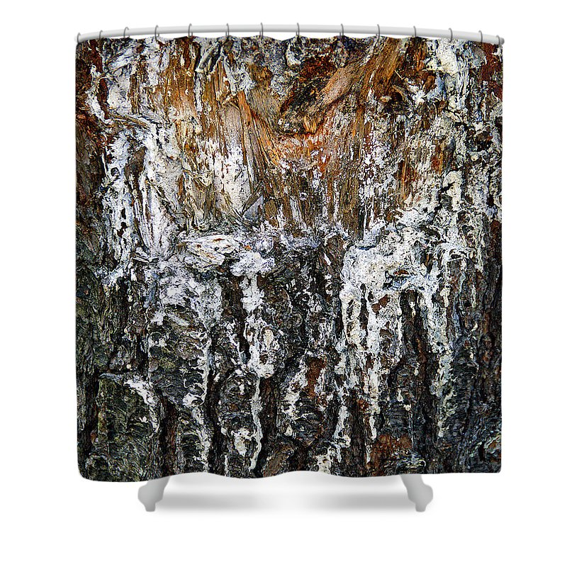 Tree Shower Curtain featuring the photograph Agony And Ecstasy by Lynda Lehmann
