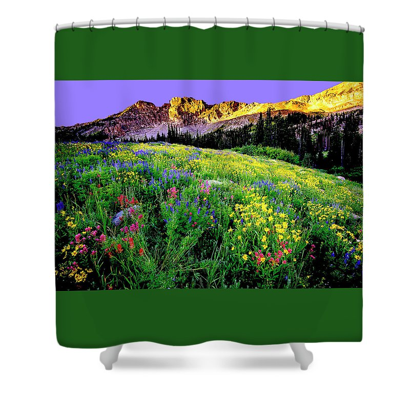 Landscape Shower Curtain featuring the photograph Albion Meadows by Norman Hall
