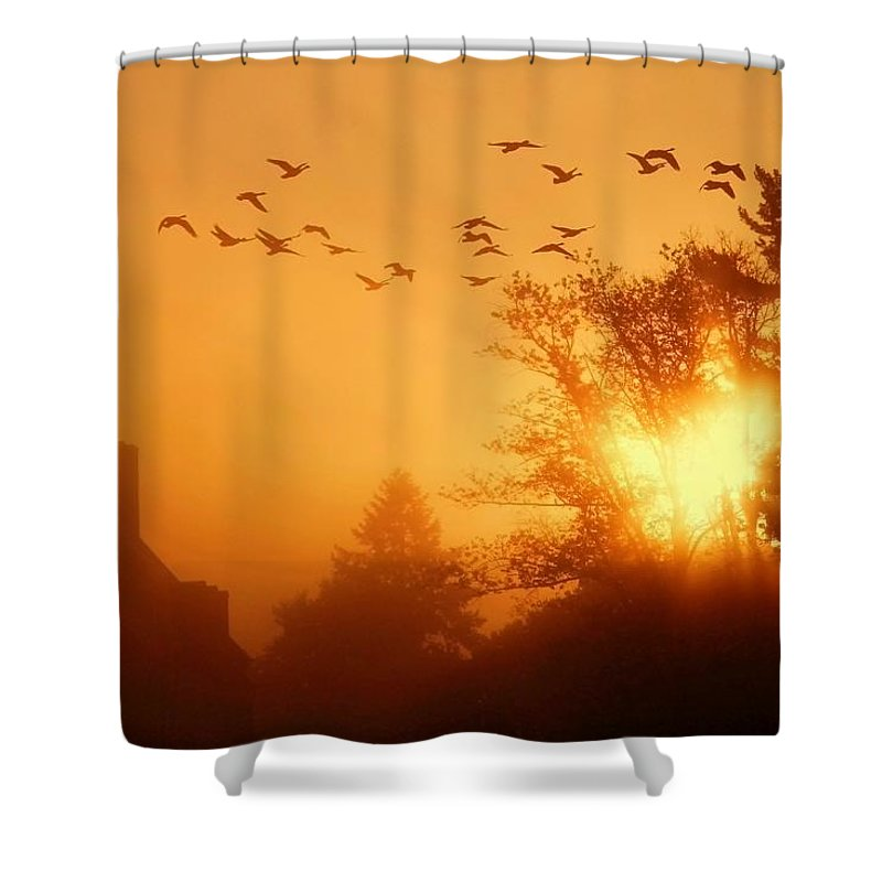 Sunrise Shower Curtain featuring the photograph Alive by Mitch Cat