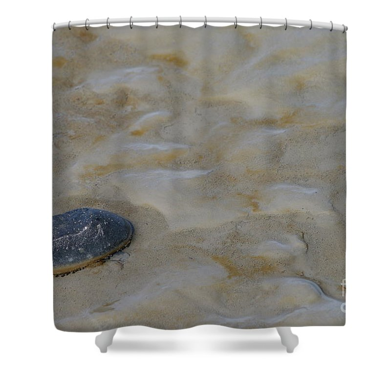 Beach Shower Curtain featuring the photograph All Alone by Rick Monyahan