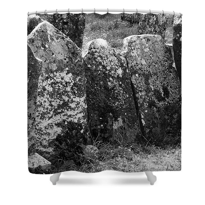 Ireland Shower Curtain featuring the photograph All In A Row At Fuerty Cemetery Roscommon Ireland by Teresa Mucha