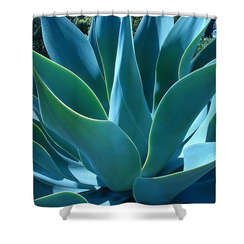 Abstract Shower Curtain featuring the photograph Aloe 2 by Lois Boyce