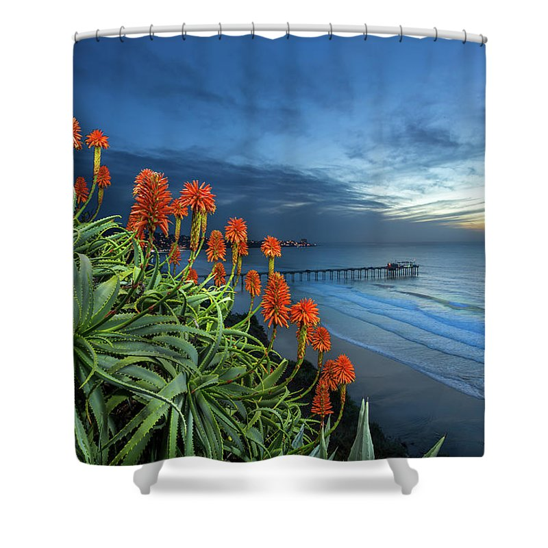 Green Shower Curtain featuring the photograph Aloe Vera Bloom by Creigh Photography