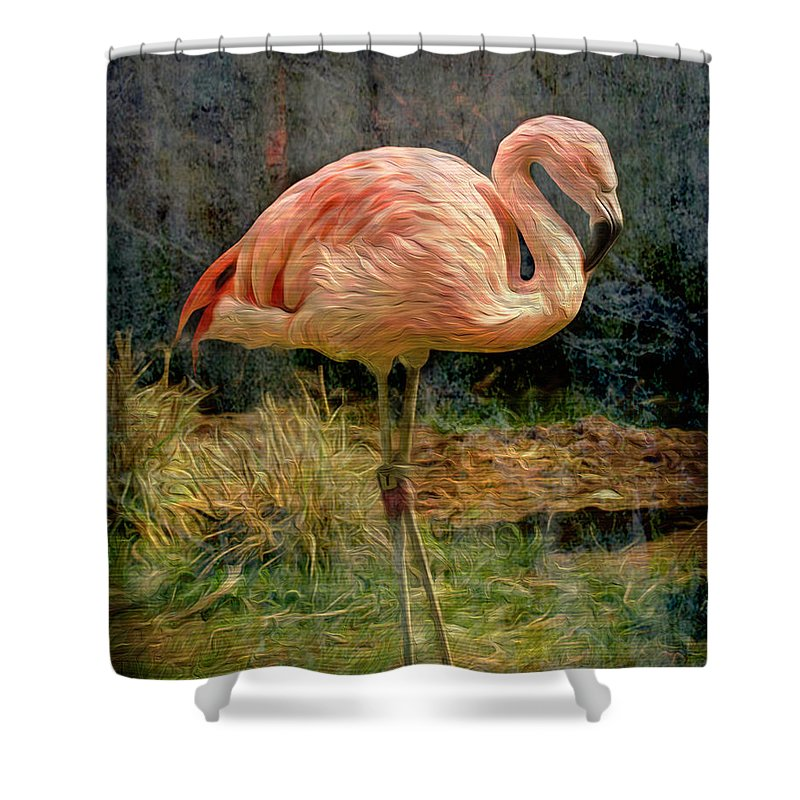 Alone Shower Curtain featuring the photograph Alone by Cynthia Wolfe