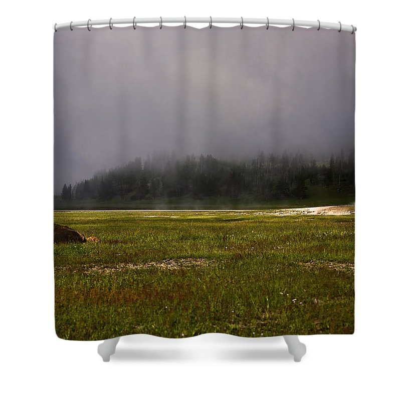 Nature Shower Curtain featuring the photograph Alone In Fog by John K Sampson