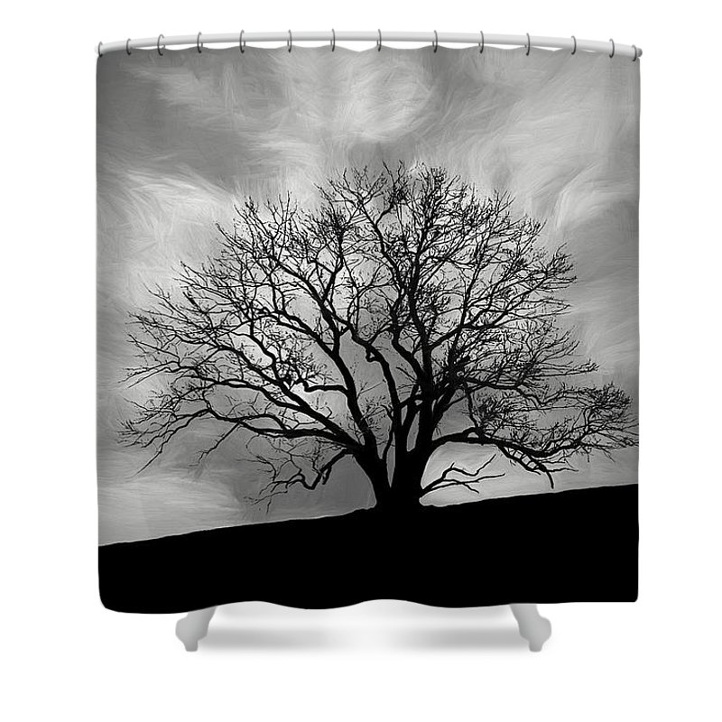 Alone Shower Curtain featuring the photograph Alone On A Hill In Black And White by Tom Mc Nemar