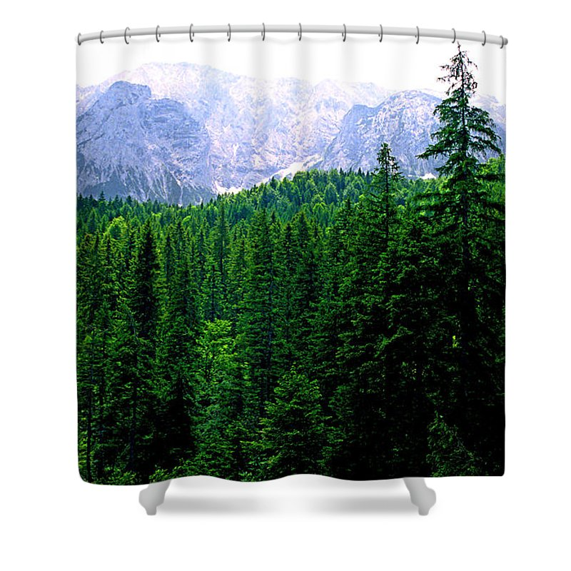 Bavaria Shower Curtain featuring the photograph Alpine Forest by Kevin Smith