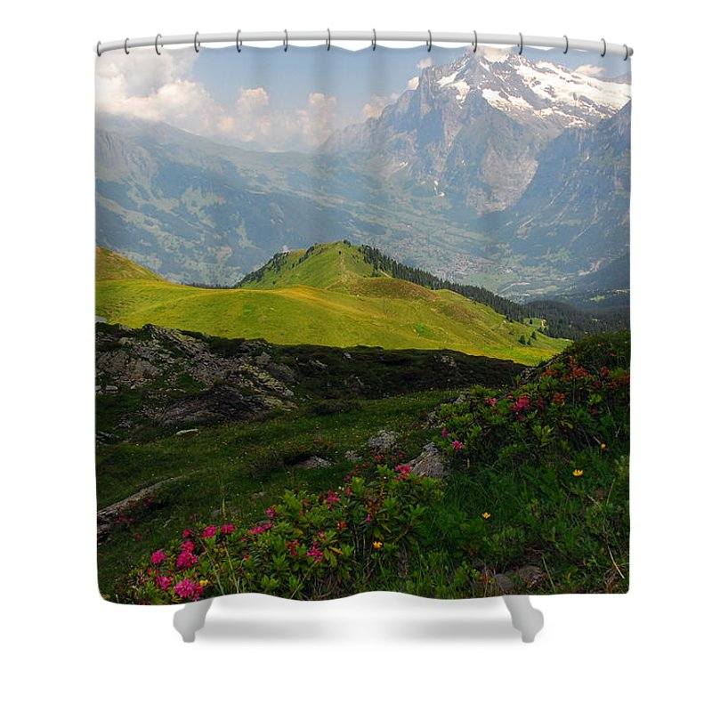 Grindelwald Shower Curtain featuring the photograph Alpine Roses In Foreground by Anne Keiser