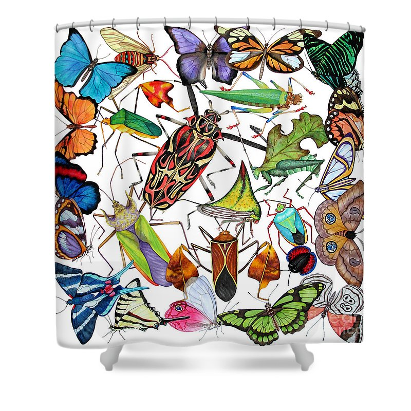 Insects Shower Curtain featuring the painting Amazon Insects by Lucy Arnold