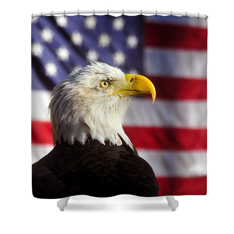 Bald Eagle Shower Curtain featuring the photograph American Eagle by David Lee Thompson